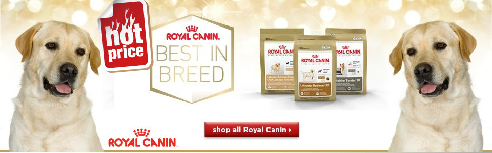 Pet Shop Caini Royal Canin