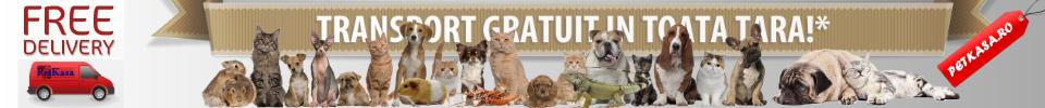 Pet Shop - Pet Kasa Transport