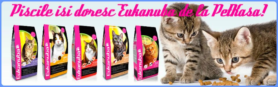 Pet Shop Pisici Eukanuba